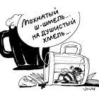 Мохнатый шмель, Иванов Владимир