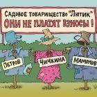 Не платят взносы, Иванов Владимир