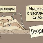 Мышеловки, Иванов Владимир