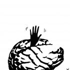 Мозг и рука, Бондаренко Марина