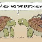 Тормоз для черепахи, Иванов Владимир
