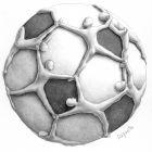 Футбольный мяч, Далпонте Паоло