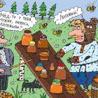 Мёд, Белозёров Сергей