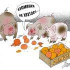 Специалисты по апельсинам, Зеленченко Татьяна