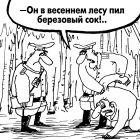 Березовый сок, Шилов Вячеслав