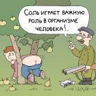 О пользе соли, Иванов Владимир