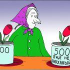 Бабка цветочница, Кинчаров Николай