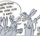 Самые серые ослы, Зеленченко Татьяна