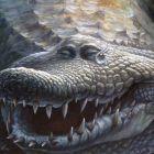 Слёзы Крокодила, Лопатин Денис