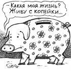 Копилка, Семеренко Владимир