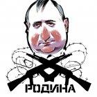 Родина в опасности, опять., Новосёлов Валерий