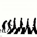 Эволюция, Бондаренко Марина