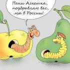 Санкционный импорт, Тарасенко Валерий