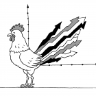 Петушиный хвост-график, Александров Василий