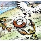 Лебедь, рак и щука, Сергеев Александр
