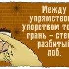 Так сказать-7, Шмидт Александр