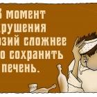 Так сказать-4, Шмидт Александр