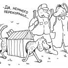 Располневшая собака, Александров Василий