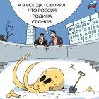 мамонт, Кокарев Сергей