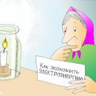 По совету Чубайса, Кинчаров Николай