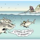 Акула-золотая рыбка, Кийко Игорь