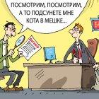 кот в мешке, Кокарев Сергей
