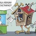 избушка, Кокарев Сергей