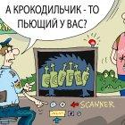 таможня, Кокарев Сергей