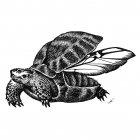 черепаха, Гурский Аркадий