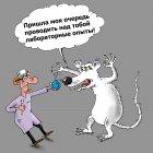 Лабораторная крыса, Тарасенко Валерий