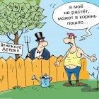 денежное дерево, Кокарев Сергей