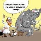 Любопытный слон, Тарасенко Валерий