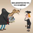 Не вербюд, Тарасенко Валерий