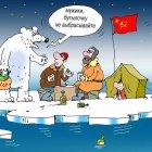 на льдине, Кокарев Сергей