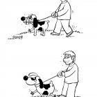 выгул собаки, Соколов Сергей