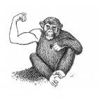 обезьяна, Гурский Аркадий