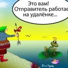 На удалёнке, Кинчаров Николай