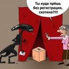 Голос, Тарасенко Валерий