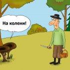 Галлюциногены, Тарасенко Валерий