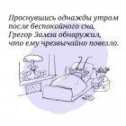 Грегор Замза, Алёшин Игорь