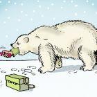 Медведь-рыболов, Александров Василий