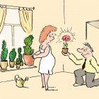 Кактусы и цветок, Александров Василий