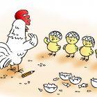 Цыплята в касках, Александров Василий