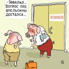 Экзамен свиньи, Александров Василий